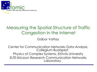 Measuring the Spatial Structure of Traffic Congestion in the Internet