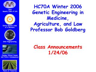 HC70A Winter 2006 Genetic Engineering in Medicine,  Agriculture, and Law Professor Bob Goldberg