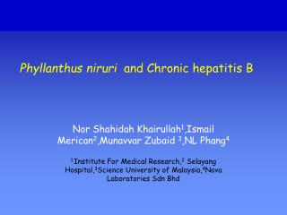 Phyllanthus niruri   and Chronic hepatitis B