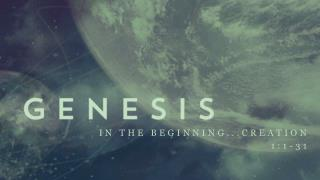 In the beginning...Creation 1:1-31
