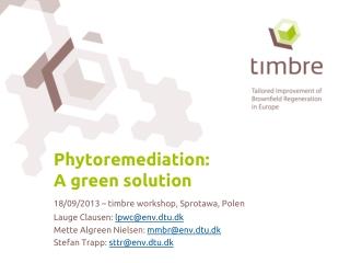 Phytoremediation: A green solution