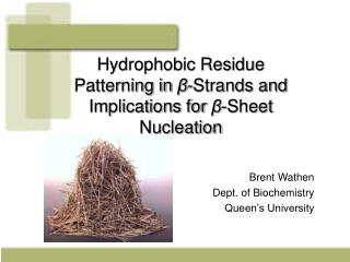Hydrophobic Residue Patterning in  ? -Strands and Implications for  ? -Sheet Nucleation