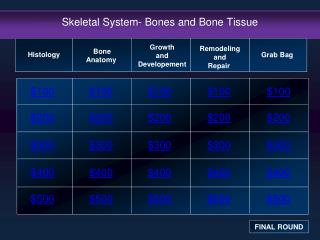 Skeletal System- Bones and Bone Tissue