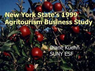 New York State's 1999 Agritourism Business Study