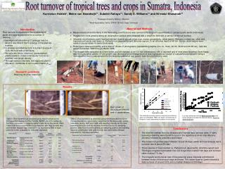 Root turnover of tropical trees and crops in Sumatra, Indonesia
