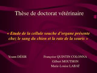 Thèse de doctorat vétérinaire