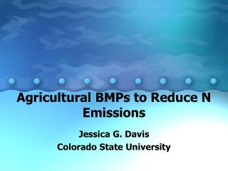 Agricultural BMPs to Reduce N Emissions