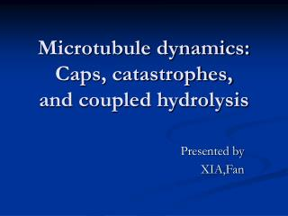 Microtubule dynamics:  Caps, catastrophes,  and coupled hydrolysis