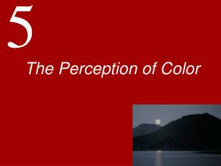 The Perception of Color
