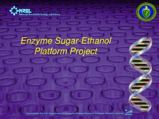 Enzyme Sugar-Ethanol Platform Project