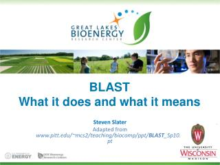 BLAST What it does and what it means