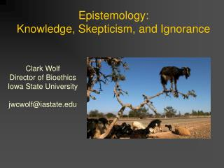 Epistemology:  Knowledge, Skepticism, and Ignorance