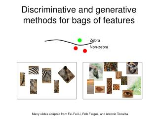 Discriminative and generative methods for bags of features