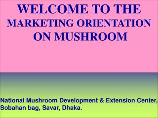 WELCOME TO THE  MARKETING ORIENTATION  ON MUSHROOM