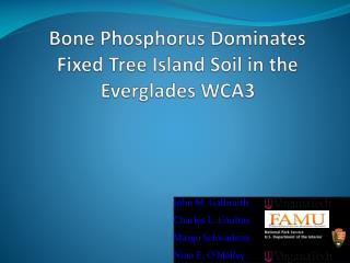 Bone Phosphorus Dominates Fixed Tree Island Soil in the Everglades WCA3