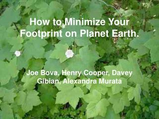 How to Minimize Your Footprint on Planet Earth.