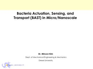 Bacteria Actuation, Sensing, and Transport (BAST) in Micro/Nanoscale