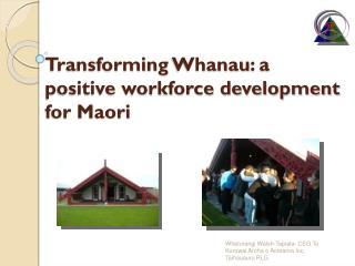 Transforming  Whanau : a positive workforce development for Maori