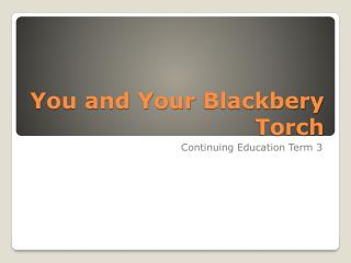You and Your  Blackbery  Torch