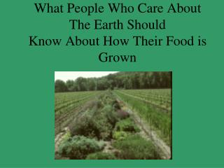 What People Who Care About The Earth Should Know About How Their Food is Grown