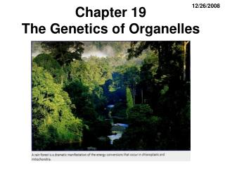 Chapter 19                            The Genetics of Organelles