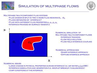 Simulation of multiphase flows
