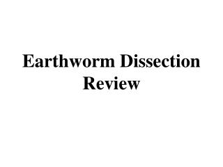 Earthworm Dissection Review