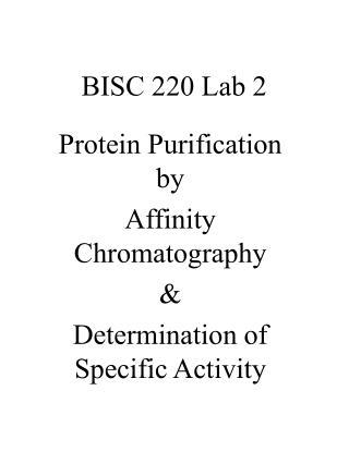BISC 220 Lab 2