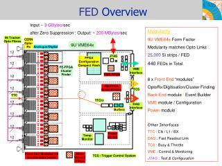 FED  Overview