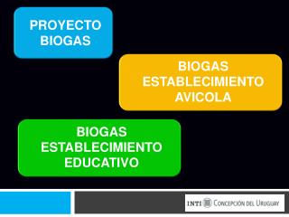 PROYECTO BIOGAS