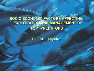 SOCIO ECONOMIC FACTORS AFFECTING EXPLOITATION AND MANAGEMENT OF TOP PREDATORS P. M. Miyake