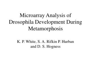 Microarray Analysis of Drosophila Development During Metamorphosis