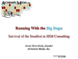 Running With the  Big Dogs : Survival of the Smallest in SEM Consulting
