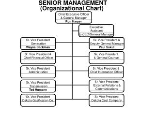 SENIOR MANAGEMENT (Organizational Chart)