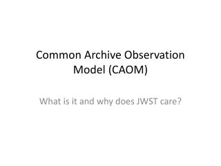 Common Archive Observation Model (CAOM)