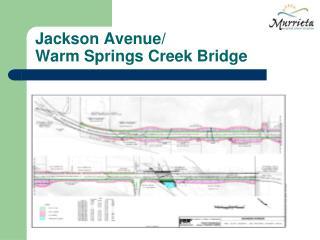 Jackson Avenue/ Warm Springs Creek Bridge
