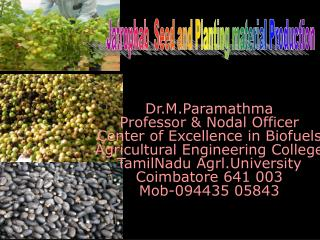 Dr.M.Paramathma Professor & Nodal Officer Center of Excellence in Biofuels