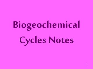Biogeochemical Cycles Notes