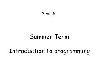 Summer Term  Introduction to programming
