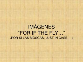 "IMÁGENES ""FOR IF THE FLY…"" ( POR SI LAS MOSCAS, JUST IN CASE….)"