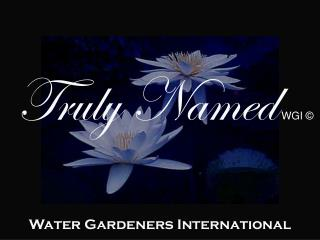 Water Gardeners International