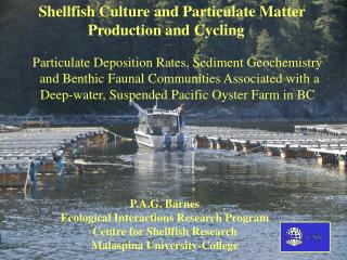 Shellfish Culture and Particulate Matter Production and Cycling
