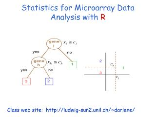 Statistics for Microarray Data Analysis with  R