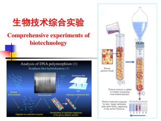 生物技术综合实验 Comprehensive experiments of biotechnology