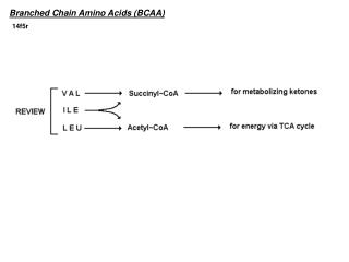 Branched Chain Amino Acids (BCAA)
