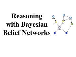 Reasoning with Bayesian Belief Networks