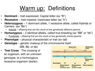 Warm up:   Definitions