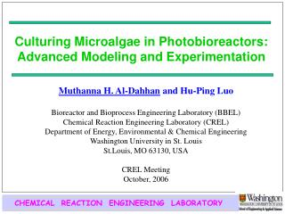 Culturing Microalgae in Photobioreactors: Advanced Modeling and Experimentation
