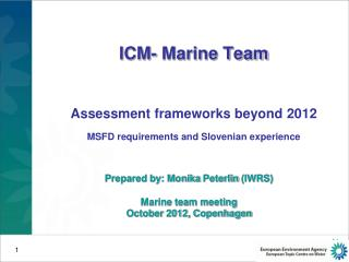 ICM- Marine Team Assessment frameworks beyond 2012 MSFD requirements and Slovenian experience