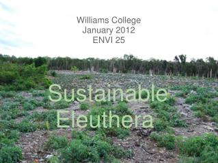 Sustainable Eleuthera